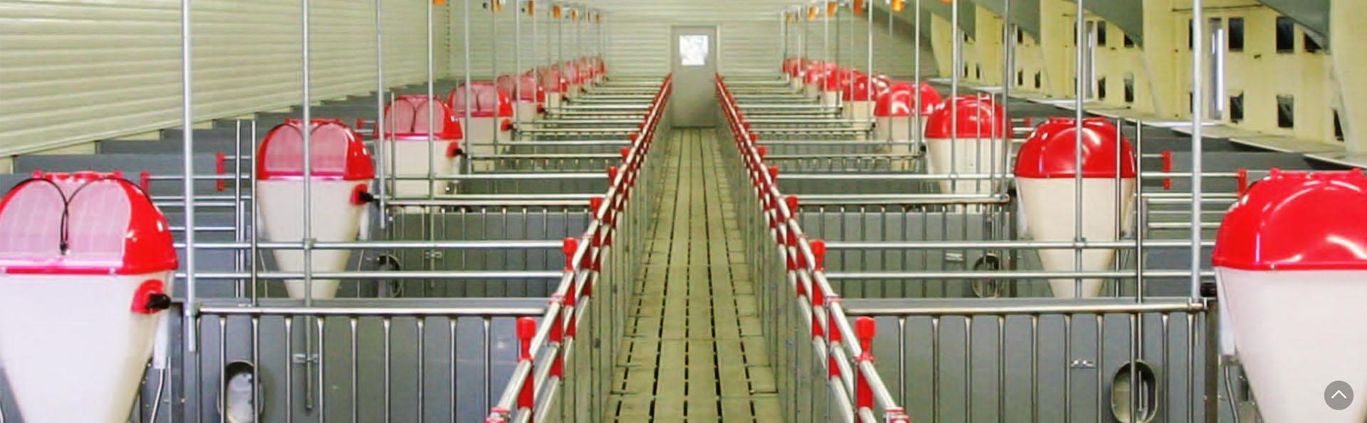 livestock equipment
